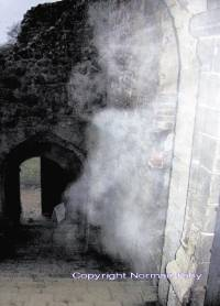 Mist or mysterious figure? One of Norman Fahy's pictures taken at Castle Rising Castle.